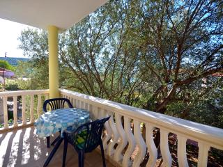 Cozy Pirovac Condo rental with Internet Access - Pirovac vacation rentals