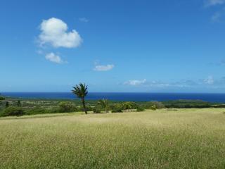 Beautiful custom home 5 acres stunning ocean views - Maunaloa vacation rentals