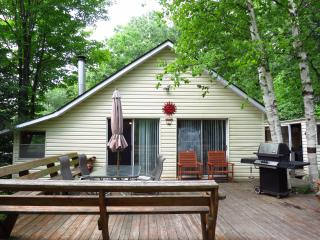 Algonquin Highlands Nice 3 Bedroom Private Cottage - Algonquin Highlands vacation rentals
