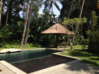 Ubud Compound house with bunk beds and ricefields - Petulu vacation rentals