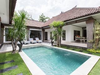 Villa Aramis: 3 Br's villa in central Seminyak - Seminyak vacation rentals