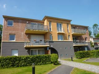 Aux portes de la métropole Lilloise - Wasquehal vacation rentals