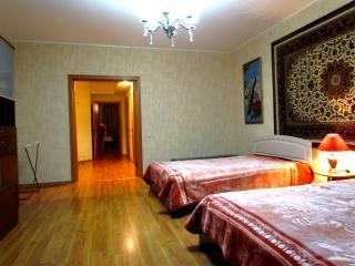 Superior apartment 47 - Novosibirsk vacation rentals
