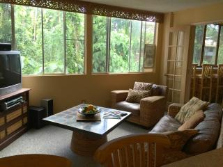Cozy 2 bedroom Hilo Condo with Internet Access - Hilo vacation rentals