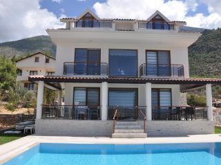Divine 4 bedroom villa in Ovacik - Oludeniz vacation rentals