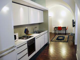 A Large and Affordable flat near Trevi fountain - Rome vacation rentals