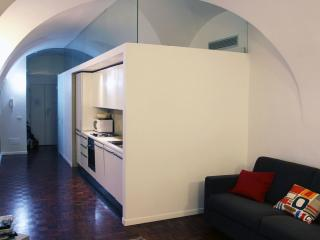 A Large Affordable Apartment near Trevi Fountain - Rome vacation rentals