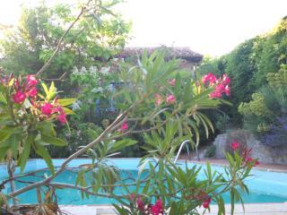 La Mimosa - cosy apartment in Villa Lake Trasimeno - Passignano Sul Trasimeno vacation rentals