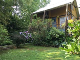 2 bedroom House with A/C in Tigre - Tigre vacation rentals