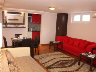 Apartment Dedinje - entire one bedroom apartment - Belgrade vacation rentals