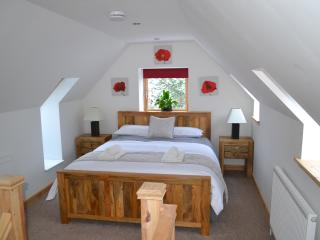 Contemporary one bedroom cabin with superfast WiFi - Farr vacation rentals