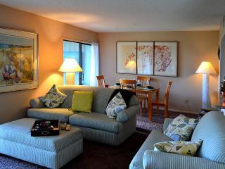 Fabulous direct intercostal marshfront 2br condo - Saint Augustine Beach vacation rentals