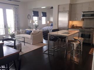 NEW!! Downtown Jewel - Alma Del Pueblo - Santa Barbara vacation rentals