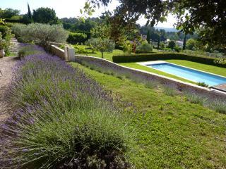 mas des oliviers locations de vacances - Saint-Pantaleon vacation rentals