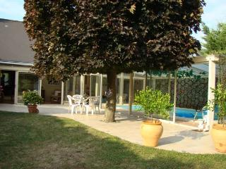 Gîte et Spa TOURAINE luxe piscine couverte hammam - Rochecorbon vacation rentals
