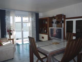 appartement 2 pièces 45m2 grd confort 350m centre - Cavalaire-Sur-Mer vacation rentals