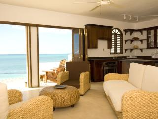 Hope House Hour Bedroom Villa - Treasure Beach vacation rentals