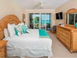 3 bedroom 3 bath beachfront fully stocked kitchen - Seven Mile Beach vacation rentals