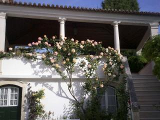 Nice House with Internet Access and Parking Space - Anadia vacation rentals