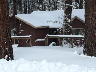 1920s Cabin 3 Bedrooms 2 Baths, sleeps 9, 3 mi Mountain High Ski Resort! - Wrightwood vacation rentals