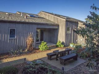 CLEF House - Sea Ranch vacation rentals