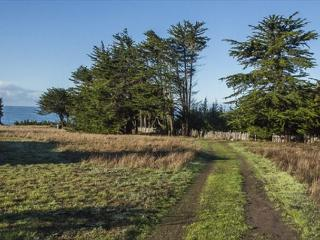 Nice House with Internet Access and Dishwasher - Sea Ranch vacation rentals