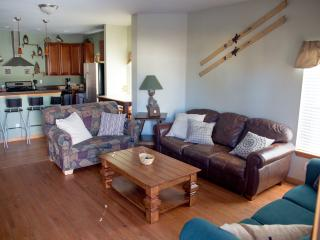 Perfect Townhouse with Deck and Internet Access - Gunnison vacation rentals