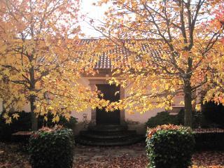 Quinta Do Ervedal - Baiao vacation rentals