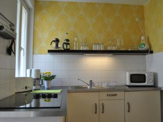 Appartement Dresden ' August der Starke' - Dresden vacation rentals
