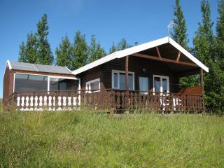 One bedroom cottage with hot tub - Geysir vacation rentals
