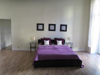 Beautiful/central/ 4 bedroom/3 bath - Budapest vacation rentals