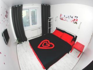 Comfortable 4 bedroom Private room in Vladivostok - Vladivostok vacation rentals