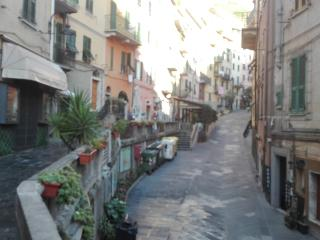 Convenient 1 bedroom Riomaggiore Apartment with Wireless Internet - Riomaggiore vacation rentals