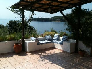 On the beach, 12 people villa, Skiathos - Kanapitsa vacation rentals