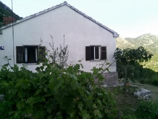 Cozy 2 bedroom House in Cilipi - Cilipi vacation rentals