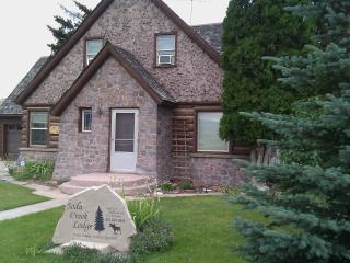 Bright 5 bedroom House in Soda Springs - Soda Springs vacation rentals