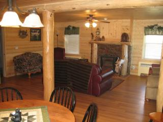 Nice House with Internet Access and Corporate Bookings Allowed - Soda Springs vacation rentals