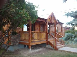 2 bedroom House with Internet Access in Soda Springs - Soda Springs vacation rentals
