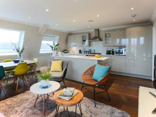 Clapham South - Penthouse with panoramic views - London vacation rentals