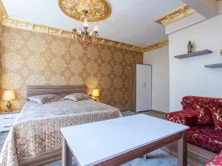 Pashas Suite Istanbul No:1 Cozy Apart in Sultanahm - Istanbul vacation rentals