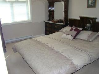 Modernly Furnished Condo, Great for Skiing - Revelstoke vacation rentals