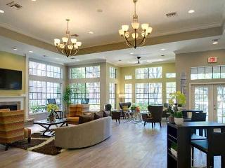 2 bedroom Furnished Apartment Medical Center - Houston vacation rentals