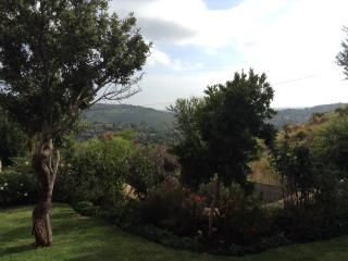 Bed and Breakfast - Johannesburg vacation rentals