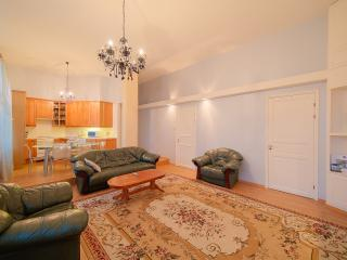 Elite apartment in the very centre - Saint Petersburg vacation rentals