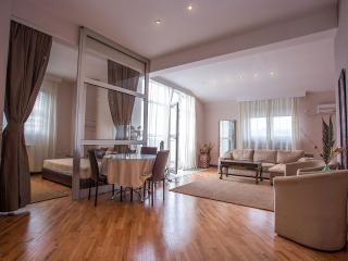 Luxury Belgrade Apartments - 5th Floor Penthouse - Belgrade vacation rentals