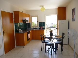 Comfortable One Bedroom Apartment - Episkopi vacation rentals
