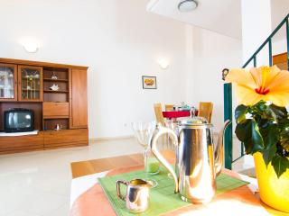 Apartment Desiree nr. 5a - Nova Vas vacation rentals
