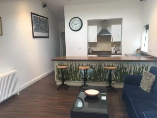 The Whitehouse Apartment - Bath vacation rentals