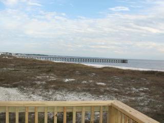 Siesta Dunes Mexico Beach: Gulf Front/Dog Friendly - Mexico Beach vacation rentals