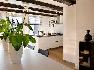 Dream House, 3 bedrooms - Amsterdam vacation rentals